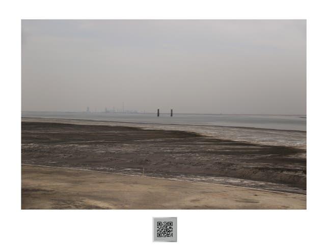 Fotografía de Florencia Levy, ganadora del primer premio Arte x Arte