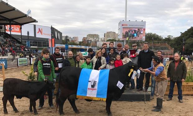 Gran Campeón Hembra Brangus, de La Sultana y Doña Anita