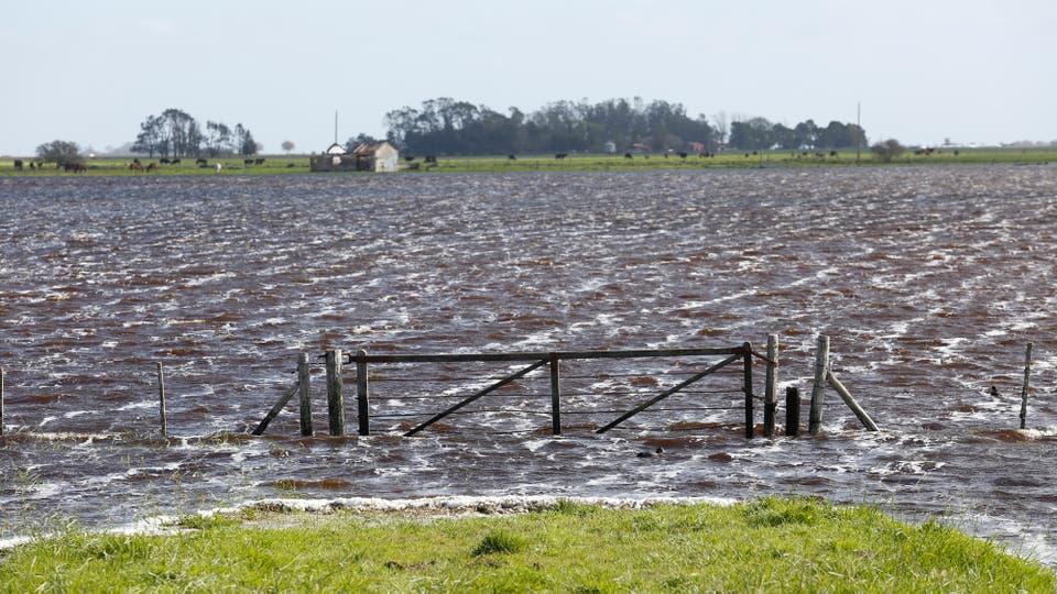 Recorrido por las localidades de Madariaga, General Lavalle y Ayacucho. Foto: LA NACION / Mauro V. Rizzi