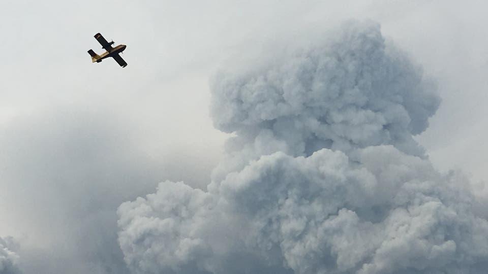 Incendio en Portugal: las llamas no ceden y las cenizas comienzan a cubrir todo. Foto: Reuters / Axel Bugge