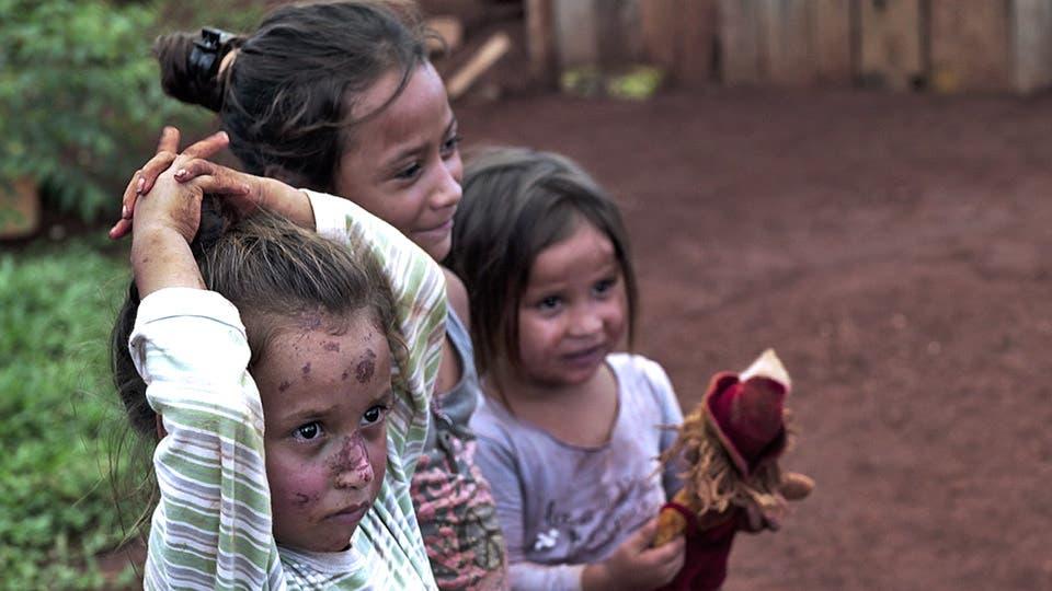 """El documental """"Me gusta el mate sin trabajo infantil"""" denuncia la explotación de niños en yerbales de Misiones. Foto: Gentileza Posibl"""