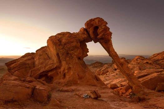 """Extraña estructura """"esculpida"""" por el viento, cuya forma se asemeja a un elefante en el Parque Estatal Valle del Fuego, en Estados Unidos. Foto: BBC Mundo"""
