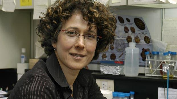 Premian a una investigadora argentina como la científica mas