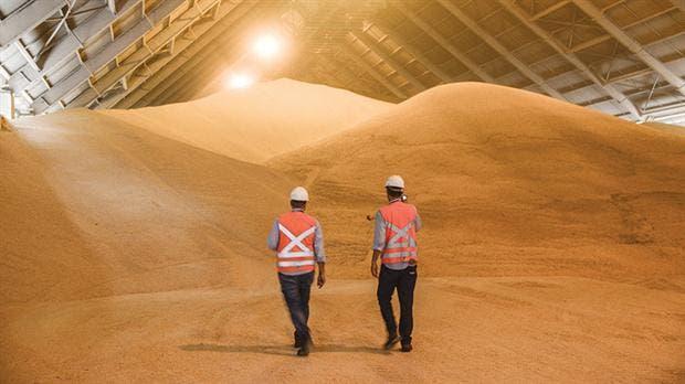 Las multinacionales encabezan el podio de la exportación de granos. Foto: Archivo