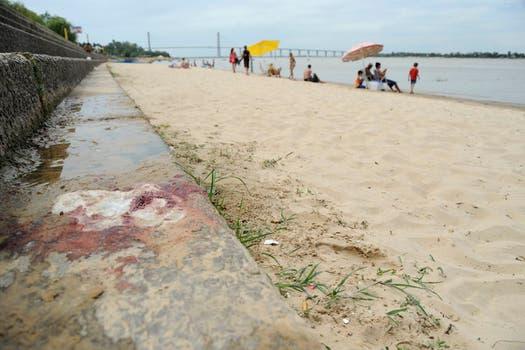En Rosario clausuraron una playa en la que fueron mordidas diez personas; por tiempo indeterminado vedaron otra en San José del Rincón. Foto: LA NACION / Marcelo Manera