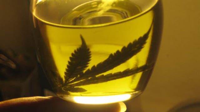 Se debate el uso del aceite de cannabis para tratar el glaucoma