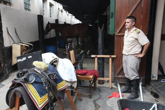 A la hora de reclutar granaderos son bienvenidos aquellos jóvenes acostumbrados a la vida de campo y al manejo de los animales. Foto: LA NACION / Guadalupe Aizaga
