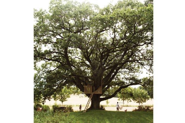 Micke, el esposo de Jennifer, fue quien tuvo la idea de hacer la casa del árbol con un carpintero amigo, de recuperar una casita de madera que estaba perdida entre el verde..