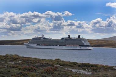 Según la Cámara de Turismo de las islas, más de 40 barcos incluyen regularmente una parada en las Malvinas en sus itinerarios de verano en el Atlántico Sur