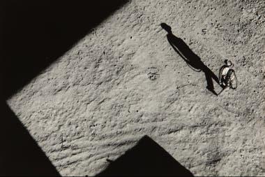 Alicia D´Amico, La sombra 1962. Integrará la muestra Mundo propio