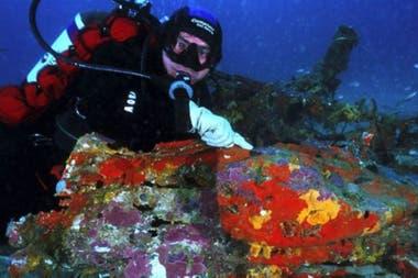 El buzo Luc Vanell se sumergió varias veces en el mar Mediterráneo hasta encontrar el avión de Antoine de Saint-Exupéry