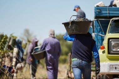 El gremio de los trabajadores reclama mayores medidas de seguridad para evitar contagios