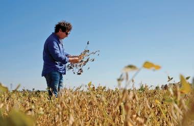 Con pérdidas de casi seis mil millones de dólares, principalmente entre soja y maíz, se estima una caída de casi un punto en el PBI, o más