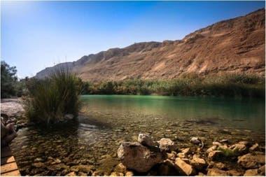 Este lugar pantanoso tiene una salinidad (sales minerales que existen en el agua) bastante reducida, lo que la convierte en un oasis.