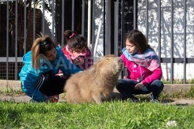 La familia tiene a Pancho en su hogar hace cinco años y piensan que fuera del barrio el animal se moriría