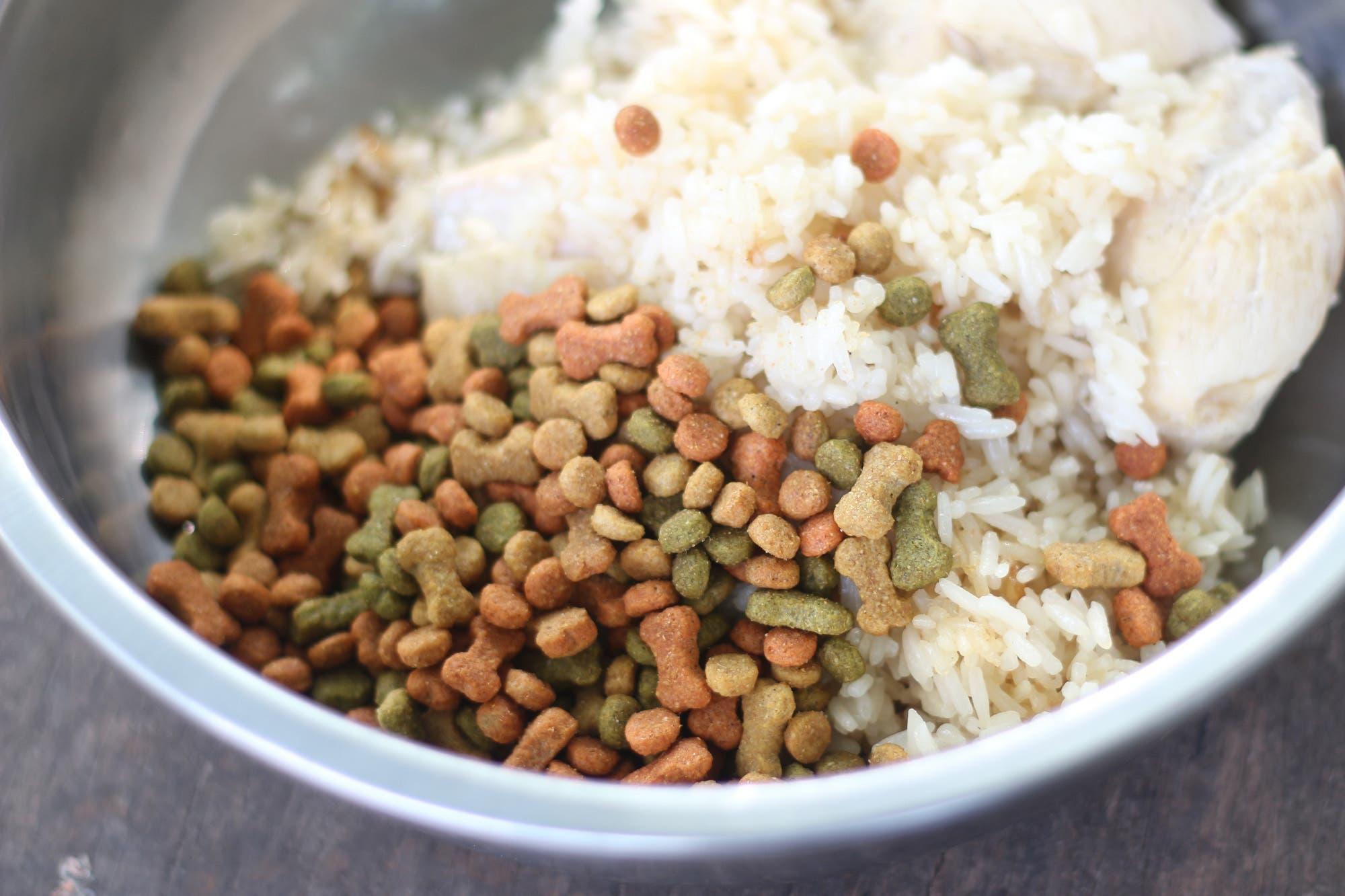Sopa de arroz con pollo gastroenteritis