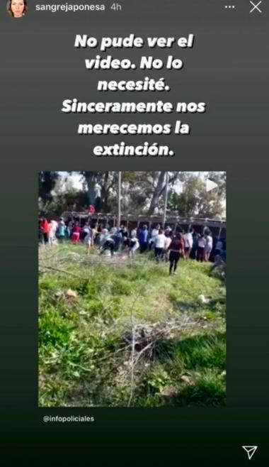 La story de Instagram en la que Eugenia Suárez repudió lo sucedido con los cerdos luego de que un camión volcara en Pilar.