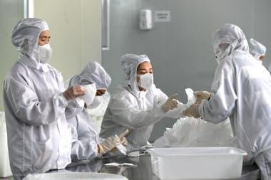 La Organización Mundial de la Salud (OMS) explicó que los coronavirus son una extensa familia de virus que pueden causar enfermedades tanto en animales como en humanos.