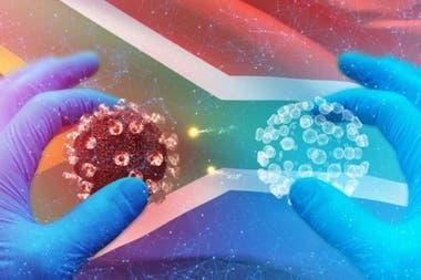 Los científicos están investigando el elevado número de infecciones asintomáticas en África.