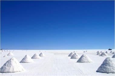 A sus orillas se han construido hoteles de sal, en su centro está la Isla del Pescado, que se caracteriza por tener cactus de hasta 10 metros de altura.