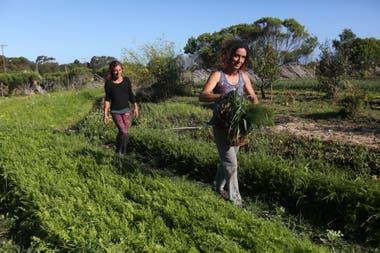 Luz Delorenzini y Soledad La Guardia en su quinta de la casa autosustentable