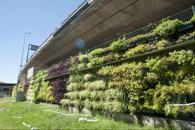 Un jardín en una autopista