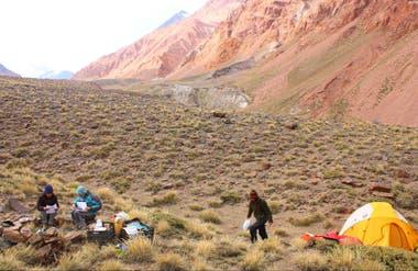 Los científicos inspeccionaron toda la Cordillera