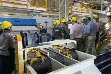 Los asistentes pudieron visitar la planta de procesamiento, deschalado y selección de la semilla