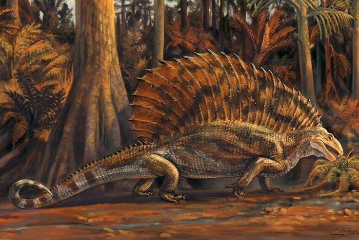 """Resultado de imagen para Hallan un fósil de reptil herbívoro que obliga a """"reescribir"""" la evolución de estos animales"""