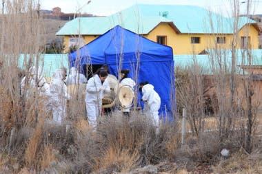Personal de la policía científica trabajando en el lugar donde estaba enterrado el cuerpo del hombre de 46 años y que fue secretario de la vicepresidenta Cristina Kirchner