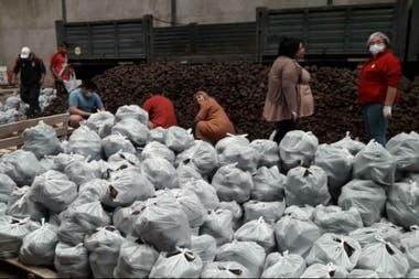 La donación movilizó a más de 2300 personas que se encargaron de embolsar la verdura