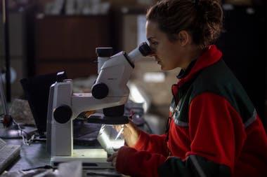 Mariela Merino es geóloga y se encarga de analizar las rocas y perforaciones en busca de indicios de oro