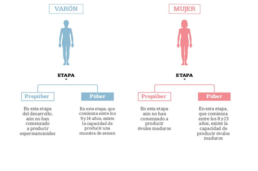 En el país, cada año, unos 1000 chicos y adolescentes podrían necesitar un tratamiento oncológico que pone en riesgo la fertilidad futura; la ley de reproducción médicamente asistida garantiza la cobertura de los procedimientos para preservarla, pero hay obstáculos y desafíos por superar