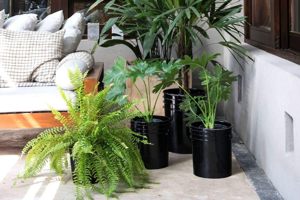 4 ideas f ciles para renovar tus casa con macetas no tradicionales la nacion - Ideas para construir mi casa ...