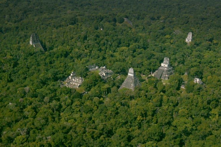 Las nuevas ciudades mayas que se descubrieron