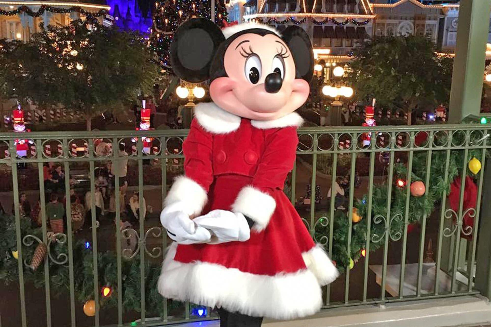 29985d9961d Cómo recibe Disney las fiestas  mucho más que fuegos artificiales y magia -  LA NACION