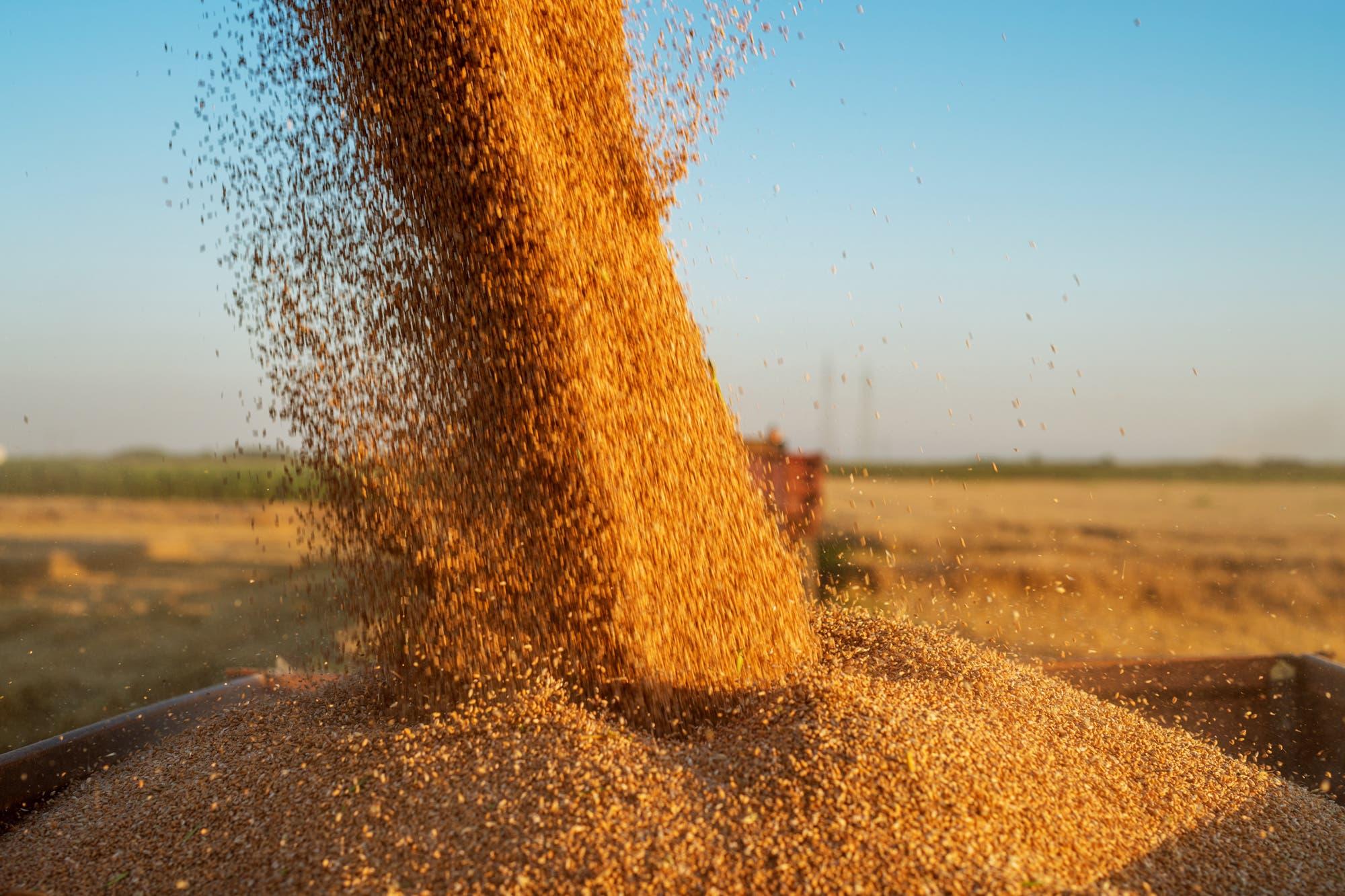 Los cambios de la agricultura europea y el acuerdo con el Mercosur