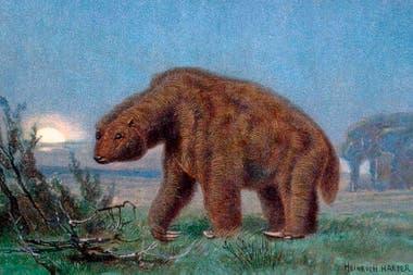 Ameghino divulga también otra de sus grandes teorías: la coexistencia del humano prehistórico americano con los megamamíferos, también conocidos como megafauna, entre los que se cuentan el gliptodonte y el megaterio