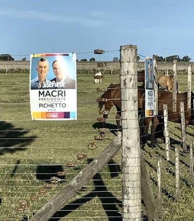 En zonas rurales Macri mejoró respecto de las PASO