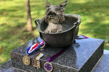 Tres de las medallas al valor que recibió Smoky por su heroica actuación en el Pacífico Sur, otorgadas por entidades Estados Unidos y Australia