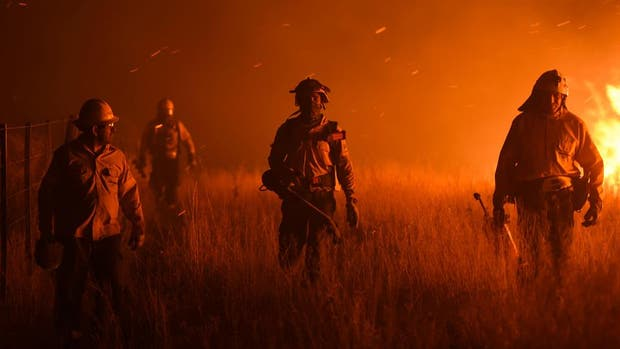 Los incendios se activaron durante la tarde ayer