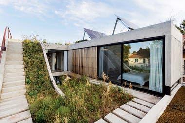 Un detalle hermoso es que, en lugar de usar barandas, los límites de la terraza se suavizaron con estanques repletos de plantas acuáticas.Crédito: Jeremías Thomas, gentileza BAM! Arquitectura