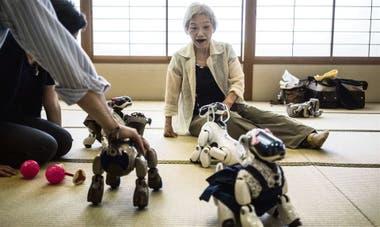 Una mujer japonesa juega con perritos Aibo, en Tokio