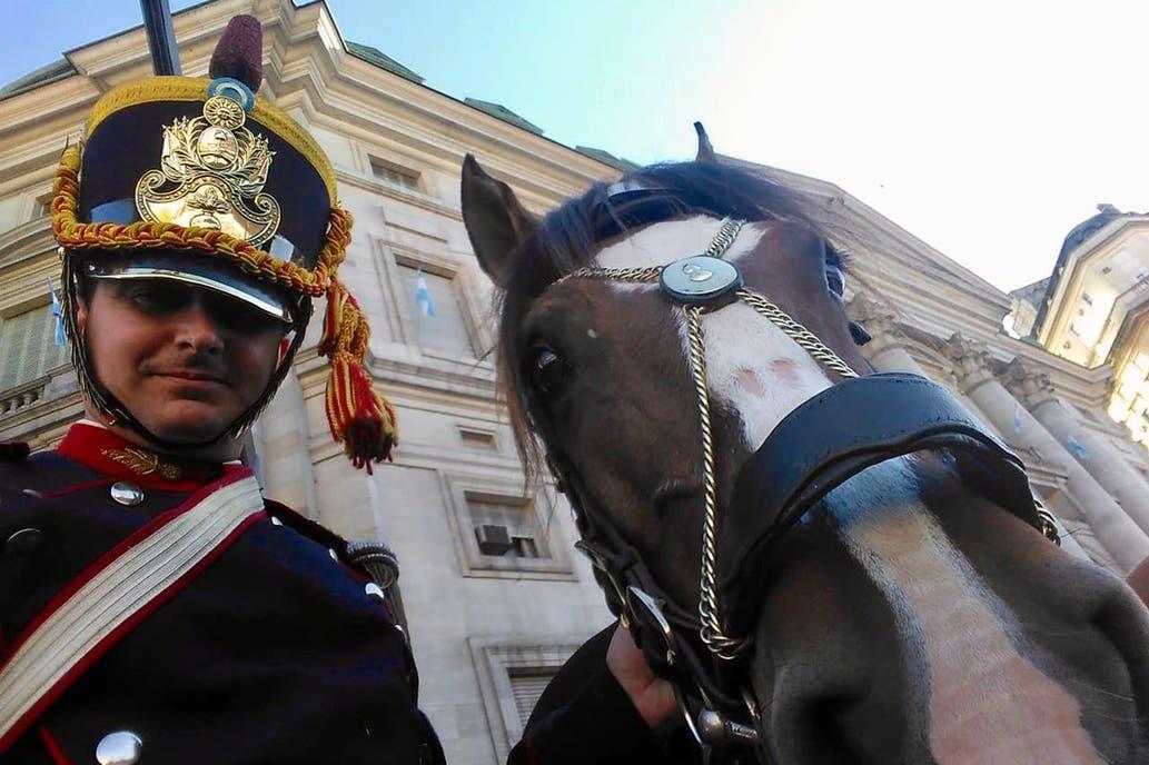 Cómo alimentaban y herraban a los caballos de San Martín