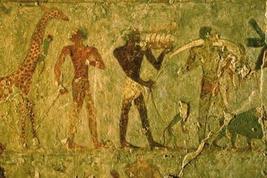 En los muros del templo quedó grabada la historia del fabuloso viaje a Tierra de Punto, como en en este fragmento, que exhibe el desembarco en Egipto de jirafas y monos