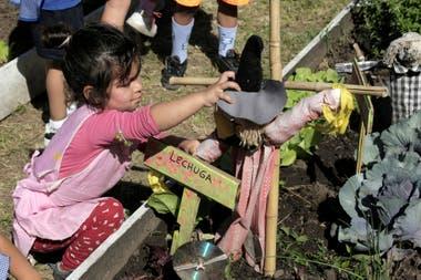 """Los chicos del jardín de infantes utilizan la huerta como un """"aula a cielo abierto""""."""
