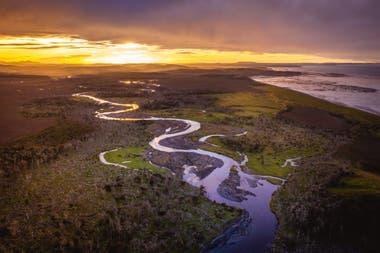 Con una extensión de tan solo 2400 km2 Península Mitre es el punto de mayor captura de carbono de toda la Argentina