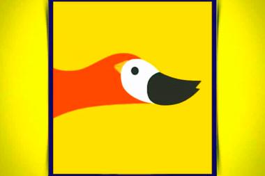 ¿Qué es lo primero que ves? ¿Un pato o un pájaro?
