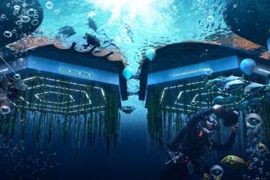 Debajo de las plataformas habrán granjas submarinas que permitirán realizar cultivos de algas y frutos de mar para consumo sustentable de estas ciudades