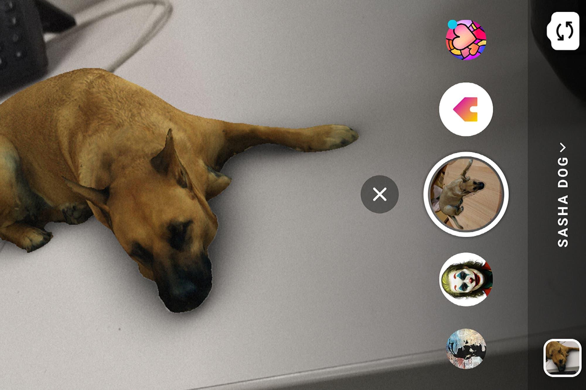 """Así es el """"filtro del perro"""" que es furor en Instagram"""
